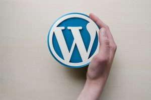 WordPress – kotisivut ja verkkokauppa